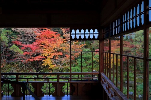 Viewing of Autumn