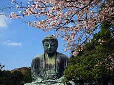 Kamakura (Optional)