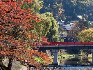 Image of fall leaves along Takayama's bridge