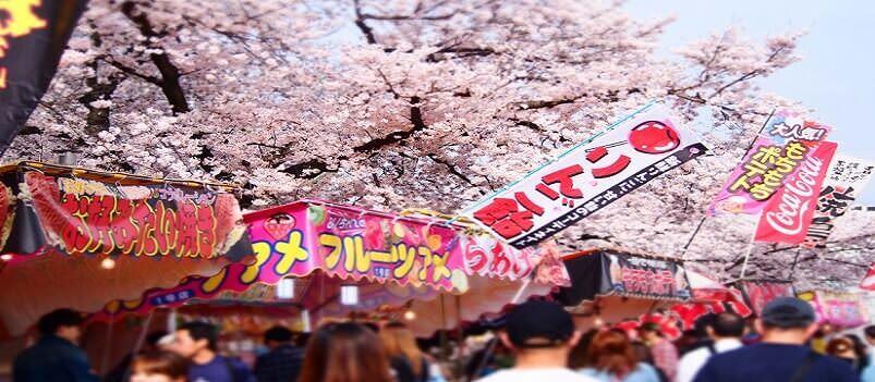Anime Japan Tour | Tokyo