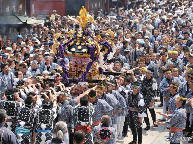 Asakusa Sanja Festival | The Wildest Festival in Tokyo