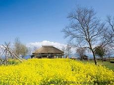 Fukushima-gata Lagoon