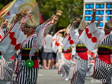 Koenji Awaodori Dance Festival