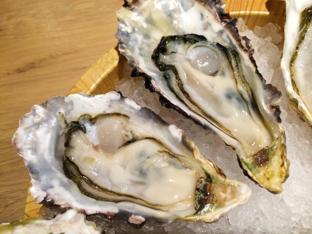 Fresh Oysters in Hiroshima & Miyajima
