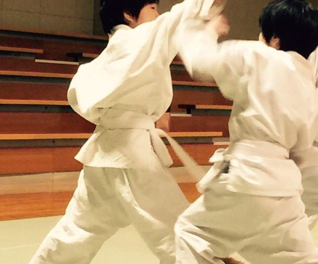 Shaolin Temple Fist Method | Shorinji Kempo