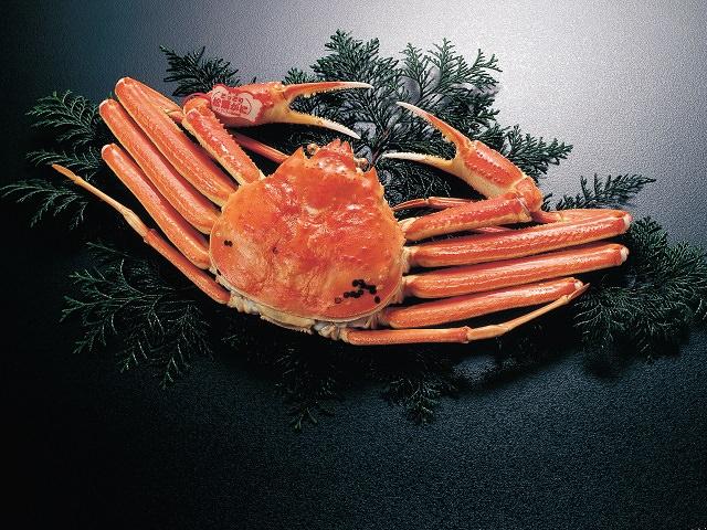 Popular Tottori Seafood Dish!
