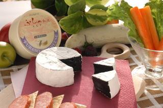 Fresh Cheese in Hokkaido