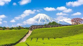 Grand Tour of Japan 2019