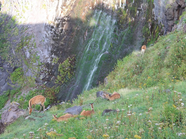 River-less Waterfall
