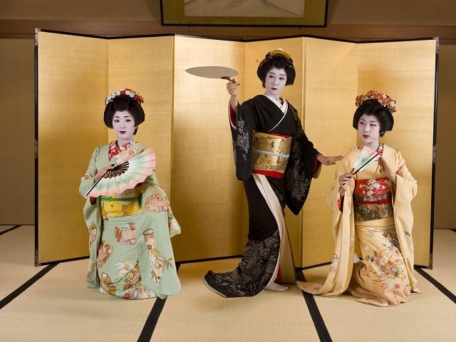 5. Highlights of Japan | Hiroshima & Niigata Wisteria