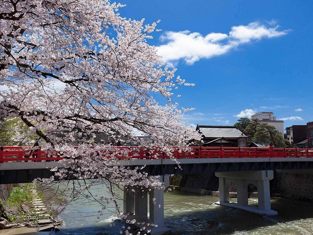 New Luxury Takayama Tour Packages!