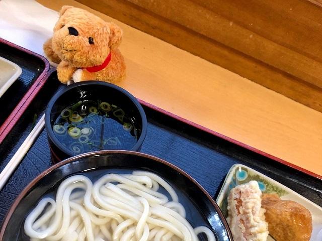 Taro's Japan Tour Adventures: Sanuki Udon