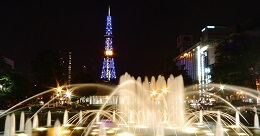 Odori Park Night View