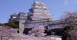 Castle with Cherry Blossoms