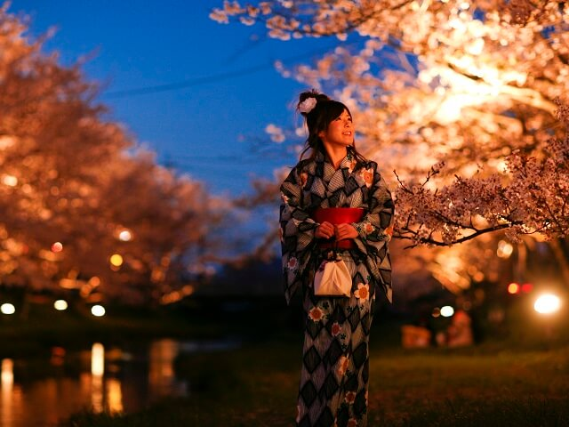 Walk along the Cherry Blossoms