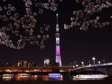 Tokyo Skytree (JDT Recommend)