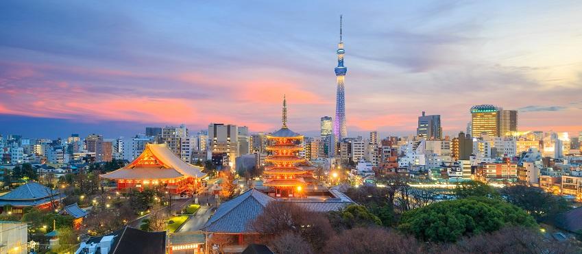 Essence of Spring | Kawachi Fuji Wisteria Garden & Hiroshima <span class=
