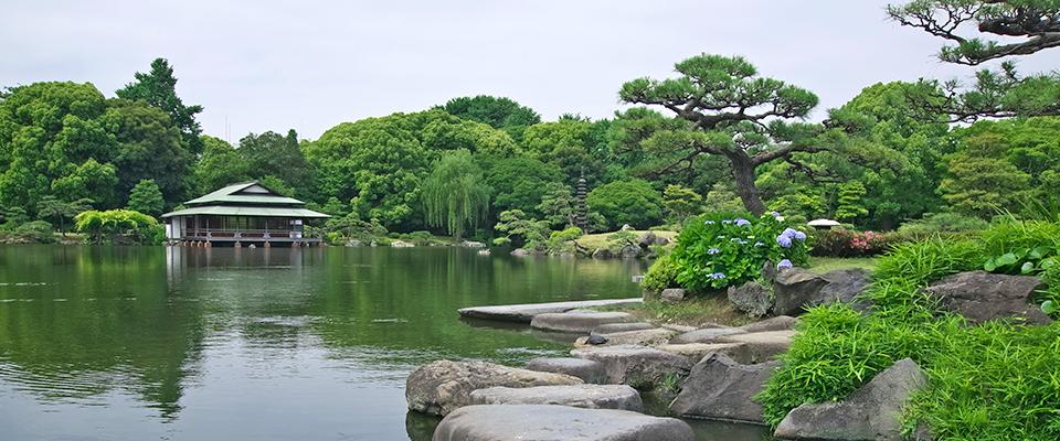 Scenic Tokyo Japanese Garden