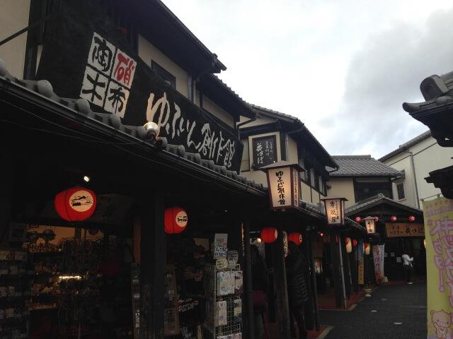 Traditional Japanese Shopping<br><em>Yunotsubo Street</em>