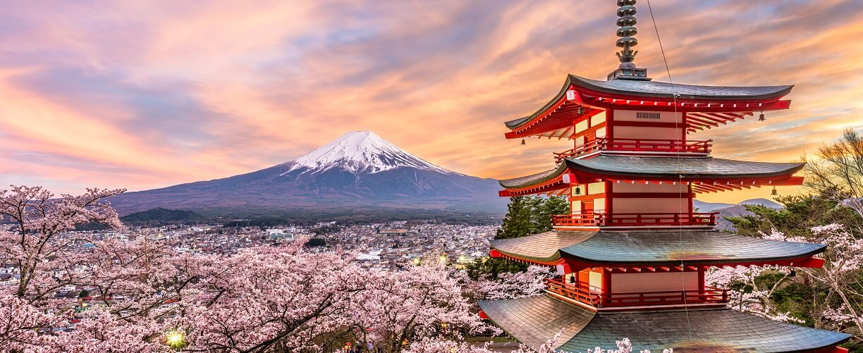 Essence of Spring | Japan Cherry Blossom Tours 2021
