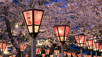Essence of Spring | Grand Tour