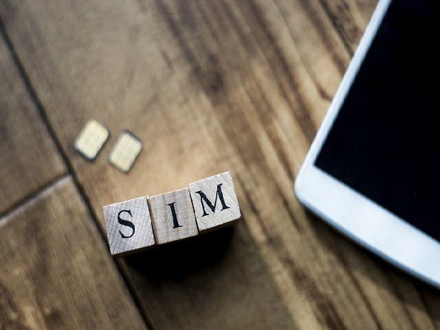 Sim Card or Pocket Wi-Fi?