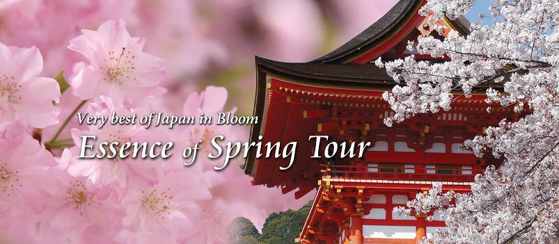 Essence of Spring Tour<span class=