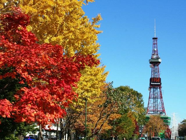 Why Should you Tour Hokkaido?
