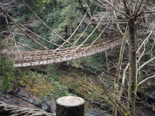 1) Vine Bridges