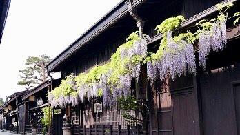 Takayama & Villages | Anime