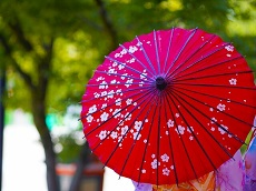 Mima Japanese Umbrella