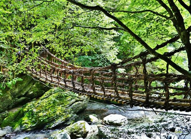 The Vine Bridges of Iya Valley