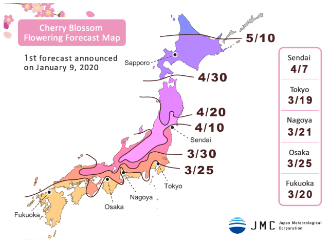 2020 Japan Cherry Blossom Forecast<br>1st Announcement