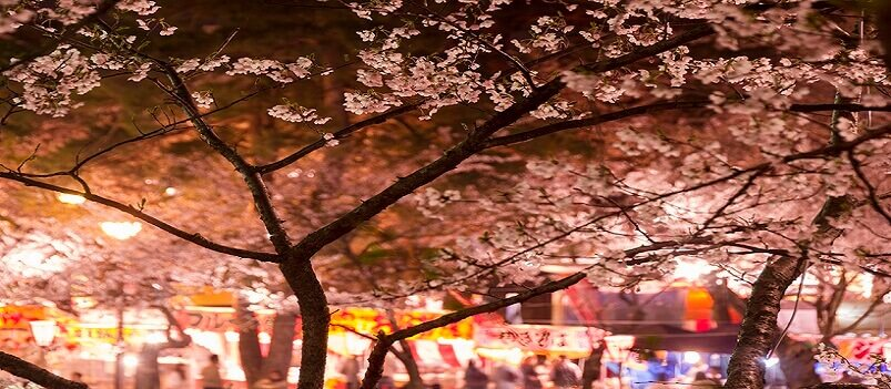 Essence of Spring | Hiroshima & Anime<span class=