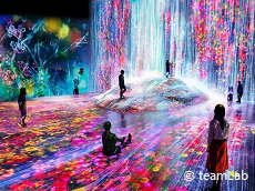 teamLab★ (JDT Recommends)