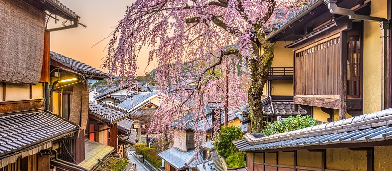 Luxury Private Tour Japan 8 Days