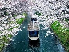 Fushimi Jikkokubune Boat Cruise