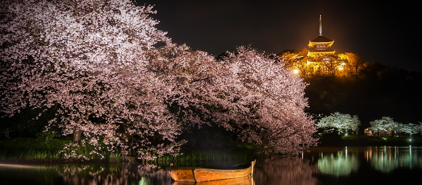 Essence of Spring | Hiroshima<span class=
