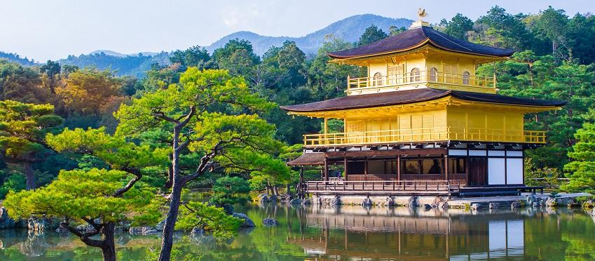 Essence Of Spring | Nikkei Tour<span class=