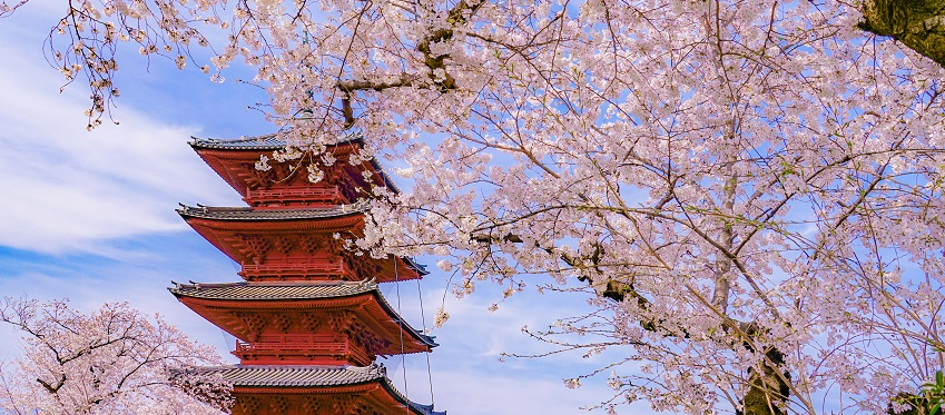 Essence Of Spring   Grand Tour with Anime<span class=